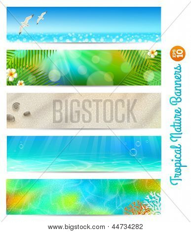Travel and vacation vector banners with tropical natures