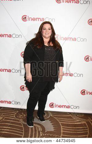 LAS VEGAS - APR 18:  Melissa McCarthy at the Twentieth Century Fox Photo Line at the Caesars Palace on April 18, 2013 in Las Vegas, NV