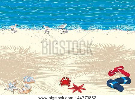 Background with tropical sand beach