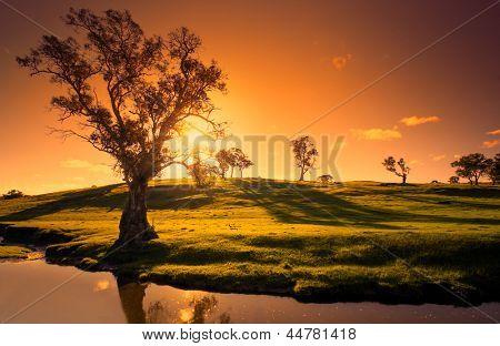 Un paisaje rural de Adelaide Hills