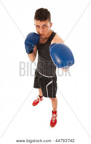 Boxing man with gloves in high angle isolated over white background