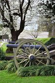 stock photo of natchez  - Two canons in front of Stanton hall in spring time - JPG