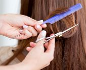 stock photo of split ends  - Cutting split ends of hair at the beauty salon - JPG