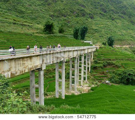 Amazing Bridge In Sapa Mountains