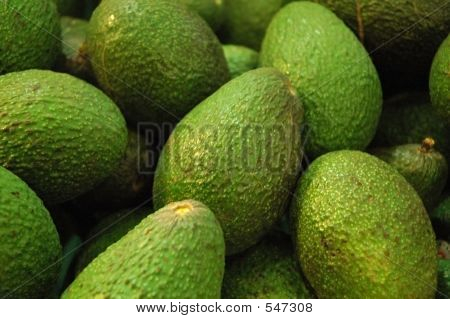The Avocado Patch