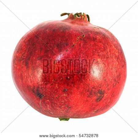 Red Fruit Pomegranate