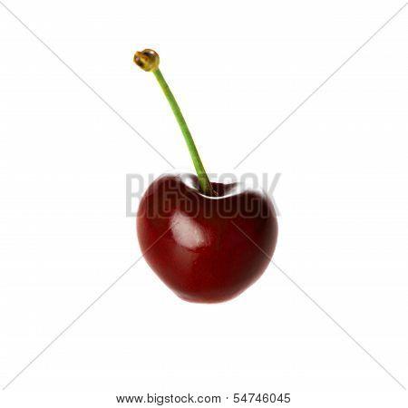 Doce de cereja isolado no branco