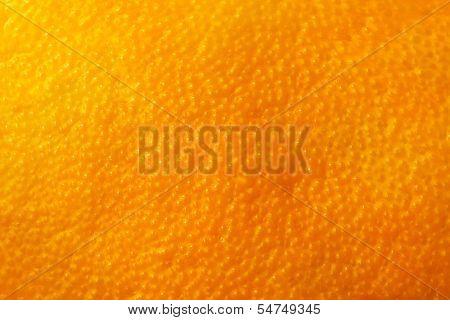 Orange fruit rind natural background, close up, macro. High resolution.