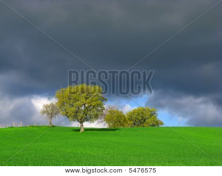 Spring Storm Clouds