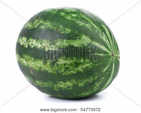 Big green water melon