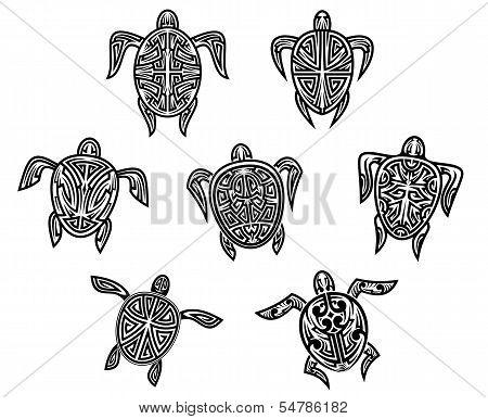 Tribal Turtles Tattoos