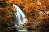stock photo of cataract  - Beautiful Waterfall - JPG