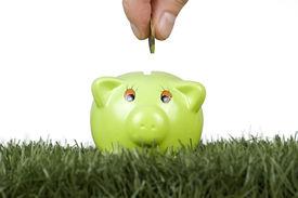 picture of save money  - saving money on a piggy - JPG