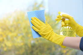 image of trigger sprayer bottle  - Hands with spray cleaning the window - JPG