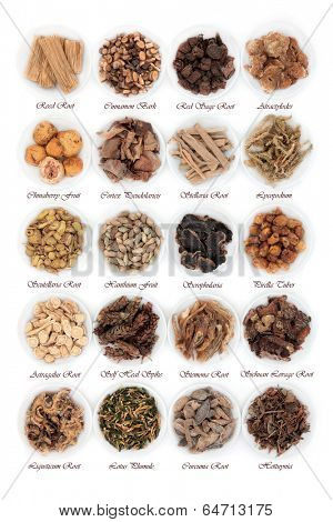 Large chinese herbal medicine selection in china bowls over white background with titles.