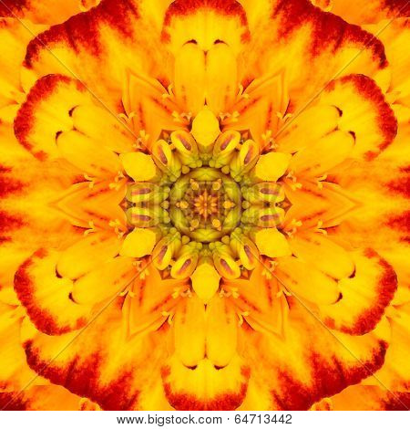 Yellow Concentric Flower Center Mandala Kaleidoscopic Design