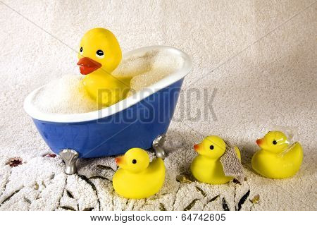 Rubber Ducky Bath Time