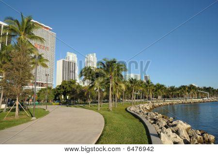 Avenida, no centro de Miami, Flórida
