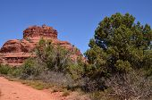 picture of straddling  - Sedona park straddles the county in the northern Verde Valley region of the U - JPG