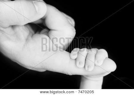 Baby Holding Man's Finger