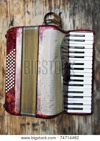 Red Classic Children's Accordian