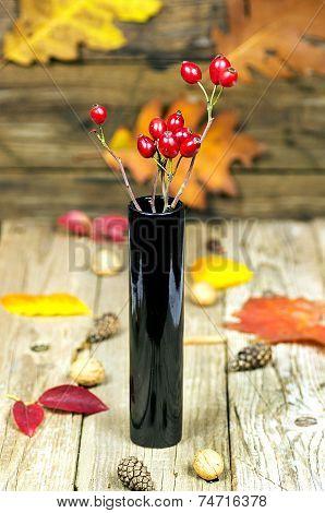 Red Rose Hips In Black Vase