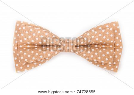 Brown Bow Tie With White Polka Dots On An Isolated White Background