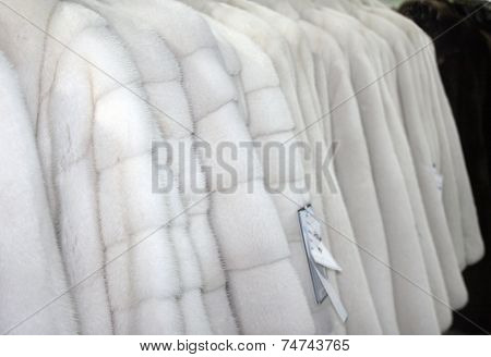 Row of many fur coats