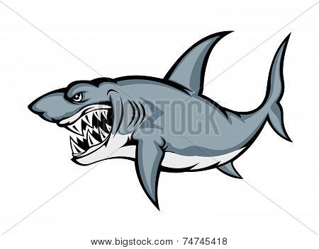 Big grey shark