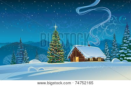 Winter landscape with a Christmas tree.