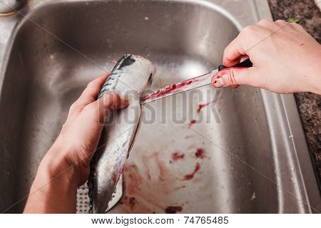 Gutting And Cleaning A Fish