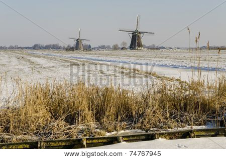 Two Dutch Mills In Winter