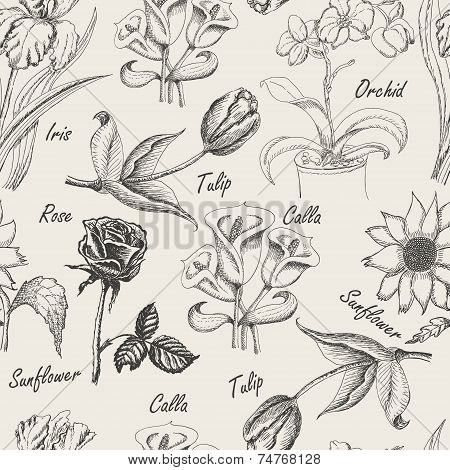 Hand Drawing Seamless Pattern Of Flowers. Iris, Calla Lily, Tulip, Orchid, Sunflower And Rose