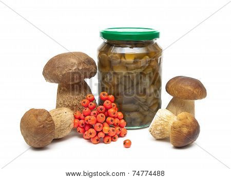 Fresh And Marinated Mushrooms And A Bunch Of Red Rowan Berries On A White Background