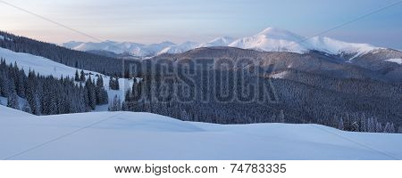 Winter landscape with fresh snow. Mountain panorama. Dusk before dawn. Carpathian mountains, Ukraine, Europe