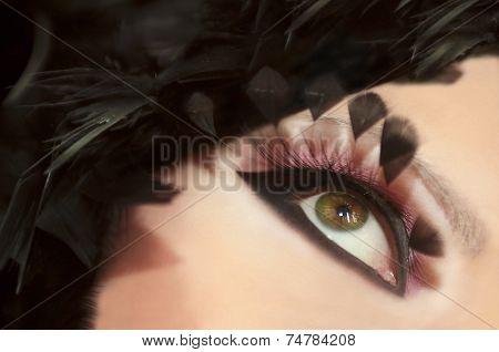 Feathers eyes.
