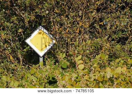 Traffic Sign In Middle Of Bush
