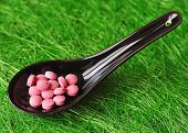 picture of b12  - Pink pills in a black japanese spoon on a green background - JPG