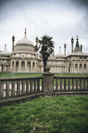 foto of saracen  - Brighton Palace Pavilion  - JPG