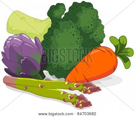 Illustration of the colorful set of vegetables