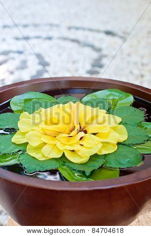 Bowl Of Water And Flowers In A Spa