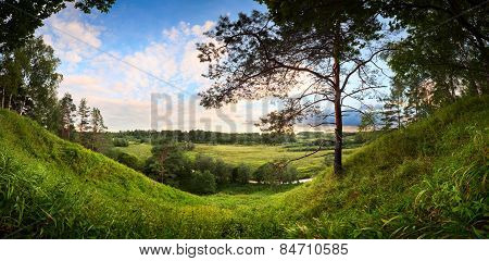 landscape panorama of the river valley with a lonely pine