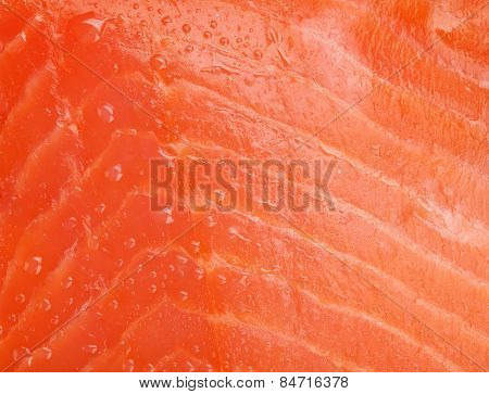 Fresh salmon fish texture with water dew
