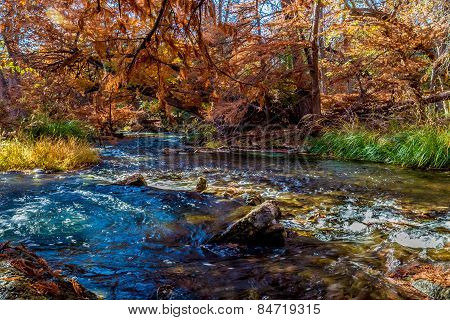 Beautiful Fall Foliage On The Guadalupe River, Texas.