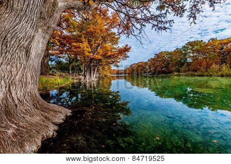 Crystal Clear Frio River with Fall Leaves at Garner State Park, Texas