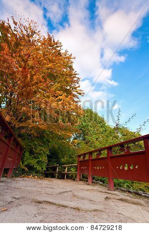 Autumn Tree And Red Wooden Bridge With Stone Laid Pathway At The Chinese Garden