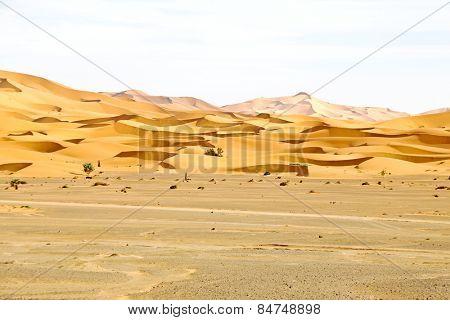 Erg Chebbi desert in Morocco Africa