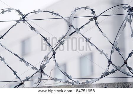 Closeup barbed wire