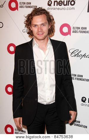 LOS ANGELES - FEB 22:  Finn Jones at the Elton John Oscar Party 2015 at the City Of West Hollywood Park on February 22, 2015 in West Hollywood, CA