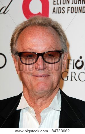 LOS ANGELES - FEB 22:  Peter Fonda at the Elton John Oscar Party 2015 at the City Of West Hollywood Park on February 22, 2015 in West Hollywood, CA